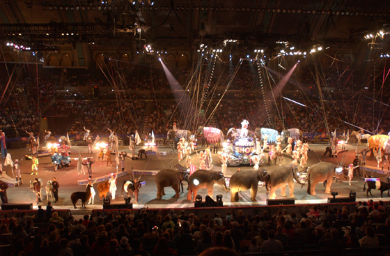 Circus at Boardwalk Hall